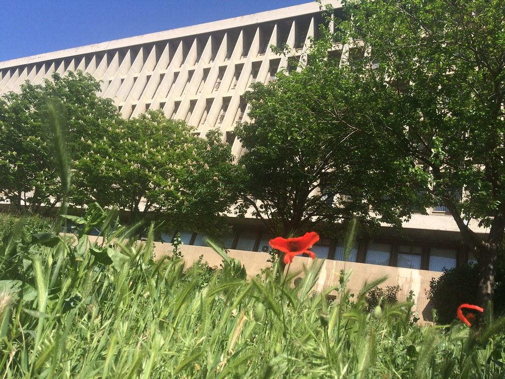 Réouverture du Campus Timone